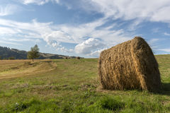 Summer Polish landscape in Sudety Royalty Free Stock Photography