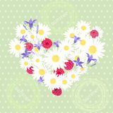 Summer. Polka dot background with hearts of camomiles, bluebells Royalty Free Stock Photos