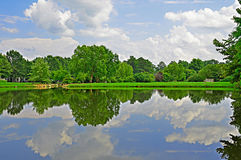 Summer pond and bench. Stock Photos