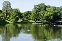 Summer pond at Norway Royalty Free Stock Images