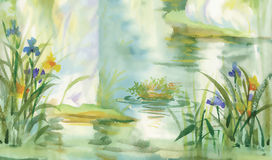 Summer pond watercolor illustration vector Royalty Free Stock Images