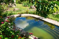 Summer pool on  country site Stock Photography