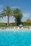 Summer pool Stock Image