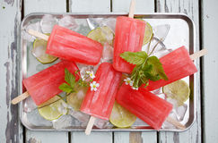 Summer popsicles Stock Image