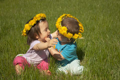 Summer portrait of beautiful baby twins Royalty Free Stock Image