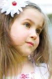 Summer portrait Royalty Free Stock Photos