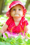 Summer portrait Royalty Free Stock Photos