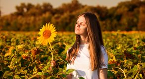 Summer portrait of happy young woman in hat with long hair in sunflower field royalty free stock photography