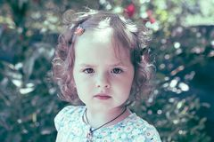 Summer portrait of little girl royalty free stock images