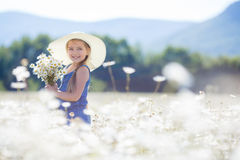 Summer portrait of a little girl in a field of white daisies. Royalty Free Stock Images
