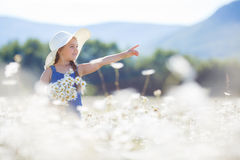 Summer portrait of a little girl in a field of white daisies. Royalty Free Stock Image