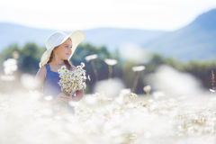 Summer portrait of a little girl in a field of white daisies. Royalty Free Stock Photo