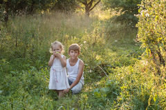 Summer portrait of sibling children are in old apple orchard Stock Image