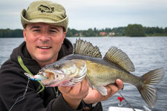 Summer portrait with walleye Royalty Free Stock Photos