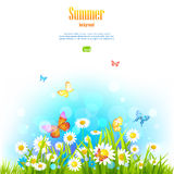 Summer positive floral background Royalty Free Stock Photography