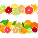 Summer postcard. Citrus fruits in garlands. Stock Images