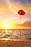 Summer postcard, paraglider over beach at sunset Royalty Free Stock Photo