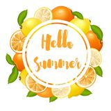 Summer poster with lemons and oranges. Vector illustration Royalty Free Stock Images