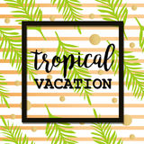 Summer  poster with palm leaf and lettering. Stock Photo