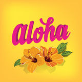 Summer poster.Typography vector. Stock Photography