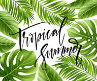 Free Summer Poster With Tropical Palm Leaf And Handwriting Lettering. Vector Illustration Royalty Free Stock Photos - 91162728