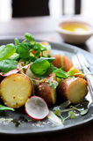 Summer potato salad with greens. Fresh healthy potato salad with peas, green shoots, radish and mustard dressing. styled by food stylist Stock Images