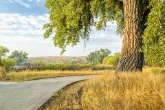 Summer on Poudre River Trail Royalty Free Stock Photography