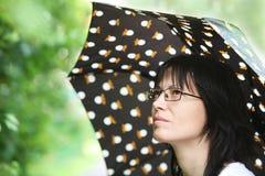 Summer rain Royalty Free Stock Photos