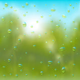 Summer rain background Royalty Free Stock Photography