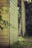 Summer rain in the courtyard Royalty Free Stock Photo