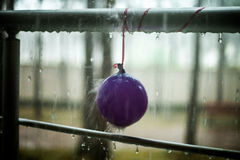 Droplets on the balloon and metal handrail, summer rain. Summer rain, droplets on metal handrail. After party concept stock photography