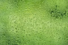 Summer rain drops on window glass fresh green background. Texture Stock Photography