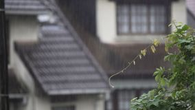 Summer rain falling on rural houses, raindrops flowing down along roof. Stock footage stock video