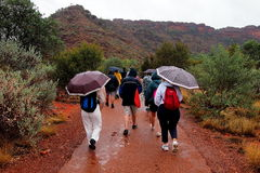 Summer Rain, Kings Canyon Royalty Free Stock Photography