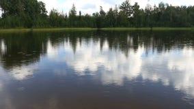 Summer rain on the lake stock footage