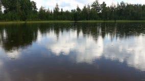Summer rain on the lake 2 stock video