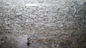Summer Rain Season Closeup stock footage