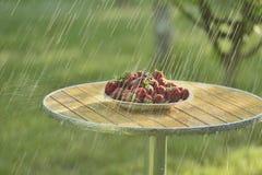Summer rain and strawberries Stock Photo