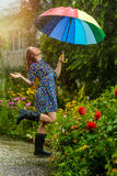 Summer rain Royalty Free Stock Images