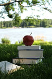 Summer Reading. Stack of books in grass by lake for summer reading with red delicious apple on top royalty free stock photo