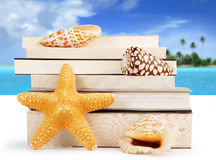 Summer reading Stock Image