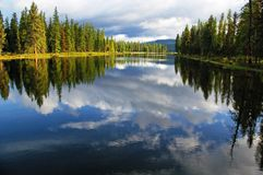 Summer Reflection Royalty Free Stock Photography