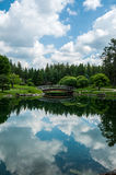 Summer reflection. Beautiful reflection on the lake of the japanese gardens at the devonian gardens Stock Photography