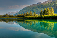 Summer Reflections Royalty Free Stock Images
