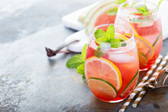 Summer refreshing cocktails with watermelon. And citrus fruits stock photos