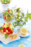 Summer refreshment with dessert fruit Royalty Free Stock Images