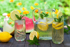 Summer refreshment Stock Images