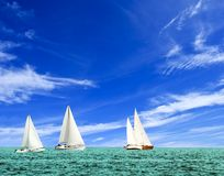 Summer regatta Royalty Free Stock Images