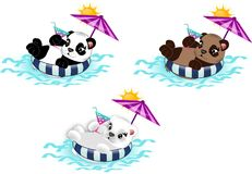 Summer relax bears. Set of three bears lying in the round with beach umbrella, drink and sun Stock Photos