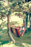 Summer relaxing. Summer green park sunny day woman laying in hammock reading a book Stock Photo